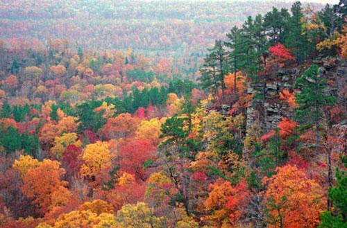 American Autumns