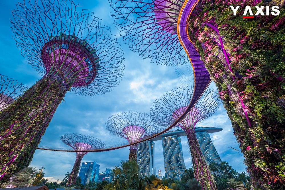Singapore Immigration